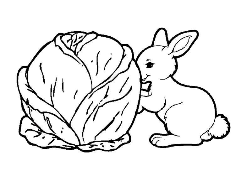 La farandole bienvenue sur le site de l 39 association des assistantes maternelles agr es du - Coloriage petit lapin ...